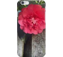 Beautiful Pink Flower iPhone Case/Skin