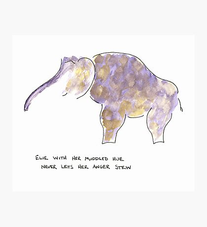 the elephant in the room  Photographic Print
