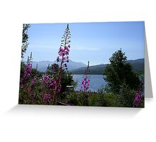 Rosebay Willow Herb  Greeting Card