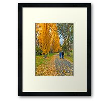 The Poplar Trail Framed Print