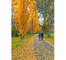 The Poplar Trail Photographic Print