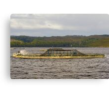 Fish Farm, Gordon River, Tasmania Canvas Print