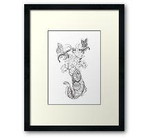 Butterfly Shrimp Framed Print