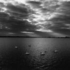 Cheddar Reservoir by Sally Barnett