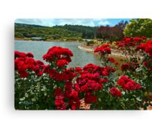 Roses At Agam Monfort Canvas Print