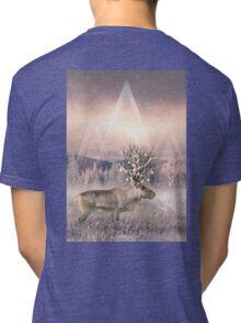 Stillness of Winter Tri-blend T-Shirt