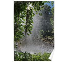 Behind Crystal Shower Falls, Dorrigo, NSW Poster