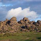 Hound Tor, Dartmoor by Sally Barnett