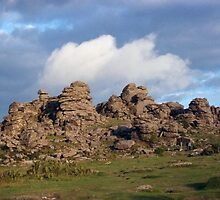 Hound Tor, Dartmoor by Sally Barnett