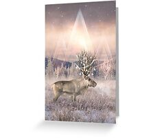 Stillness of Winter Greeting Card