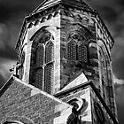 St Peters Cathedral Adelaide - The Tower. by Nick Egglington