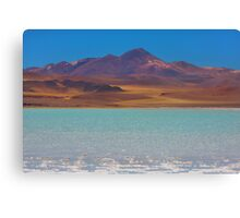 Atacama Salt Lake Canvas Print