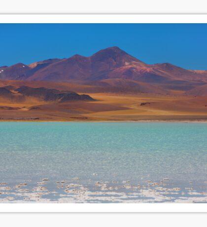 Atacama Salt Lake Sticker