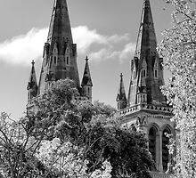 St Peters Cathedral Adelaide by Nicholas Griffin