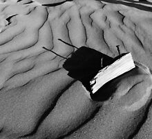 Sand shadows by Sally Barnett