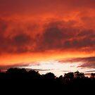 Burning sky by Sally Barnett