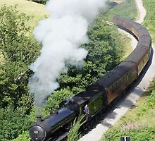 Goathland Railway by Sally Barnett