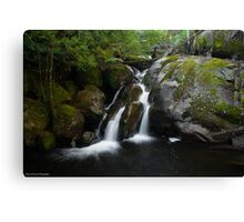 Taggerty Cascades Canvas Print