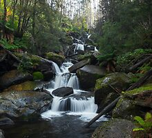 Keppel Falls by Simon Penrose