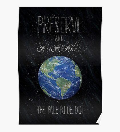 Pale Blue Dot Poster