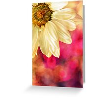 Daisy - Golden on Pink Greeting Card
