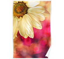Daisy - Golden on Pink Poster