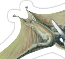 Pteranodon Sticker