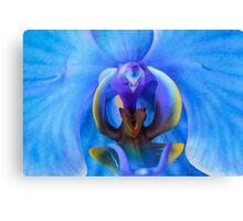 The Heart of a Blue Orchid Canvas Print