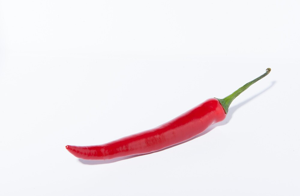 Single Red Hot Chilli by Michael Hollinshead