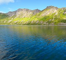 Fjord shore in Norway by DmiSmiPhoto