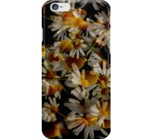 Daisy iPhone 4 Case iPhone Case/Skin