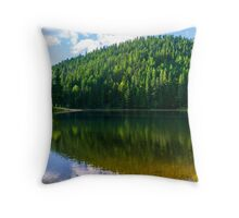 clear lake in the mountains on summer weather Throw Pillow
