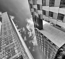 Angle by DmiSmiPhoto