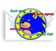 Sanic Canvas Print