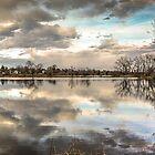 Riverbend Golden Spring by Casey Peel