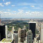 Central Park in New York. by Nancy Badillo
