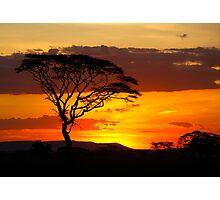 Serengeti Sunset Photographic Print