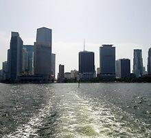 Downtown Miami by Nancy Badillo