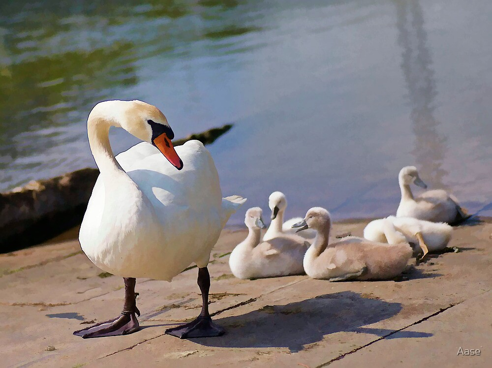 The Family by Aase