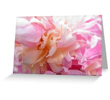 Pretty Peony 3 Greeting Card