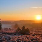Broxhead Common Sunrise  [ PVL ] by relayer51