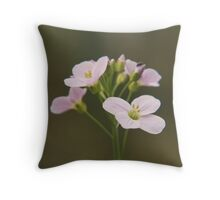 A Cuckoo flower in bloom at Downton Abbey Throw Pillow