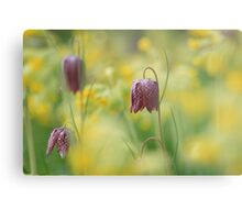 Meadow in bloom at Downton Abbey Metal Print