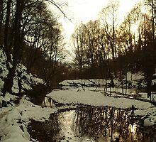 Snowy Woods by damianaashe