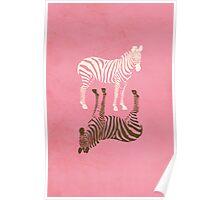 Zebras Pattern Poster