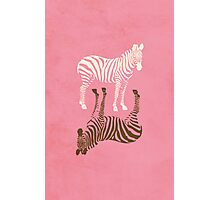 Zebras Pattern Photographic Print
