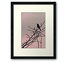 Sunset Song ~ Framed Print