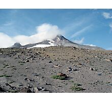 Mount Hood in Summer Photographic Print