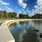 Emu Inlet, Lake Ginninderra by Property & Construction Photography