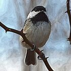 Chickadee iPad Case by William Brennan